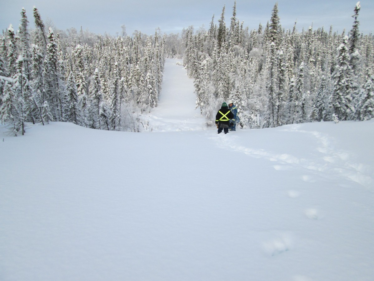 Site selection in northern Canada